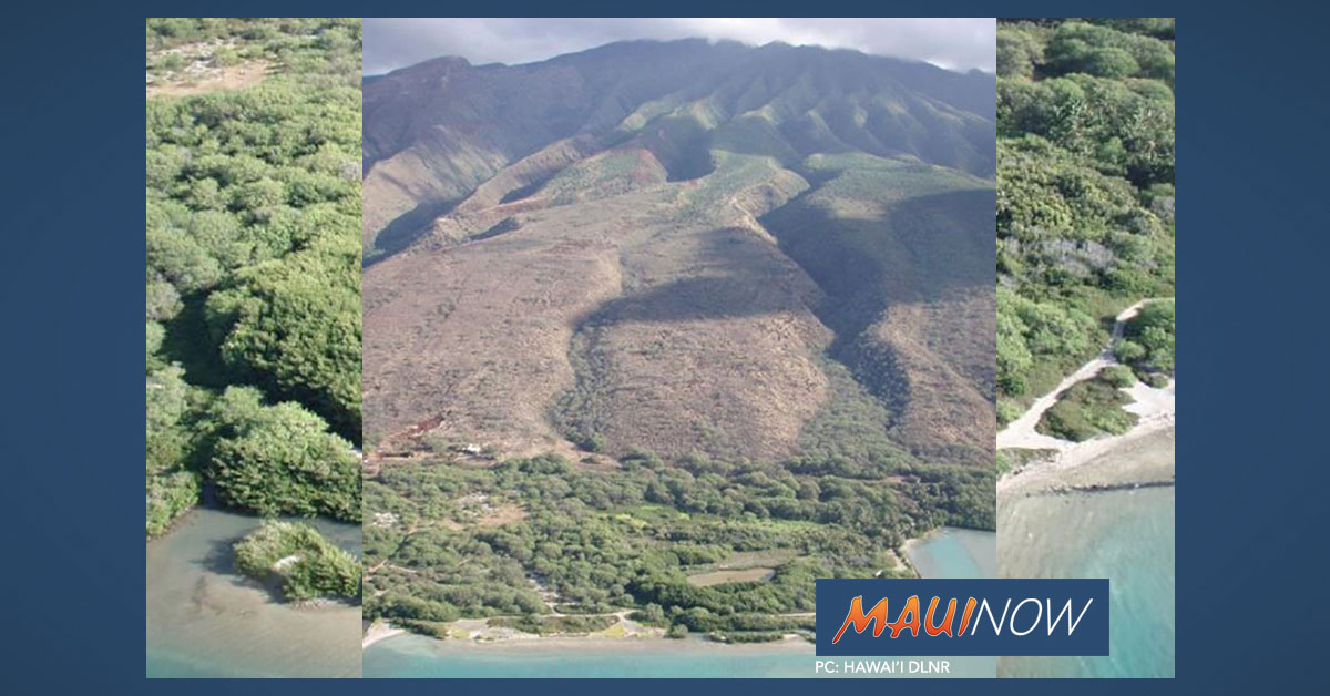 Pua'ahala Watershed on Moloka'i Acquired for Conservation