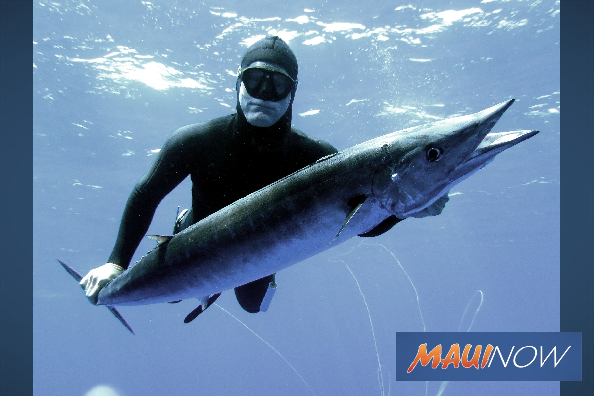Freediving Safety Topic of Free Seminar