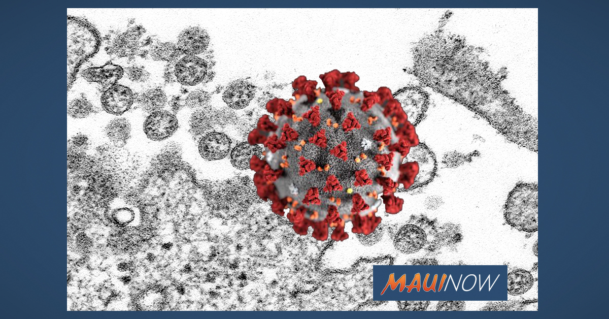 West Maui Group to Host Pre-Pandemic Planning Workshop