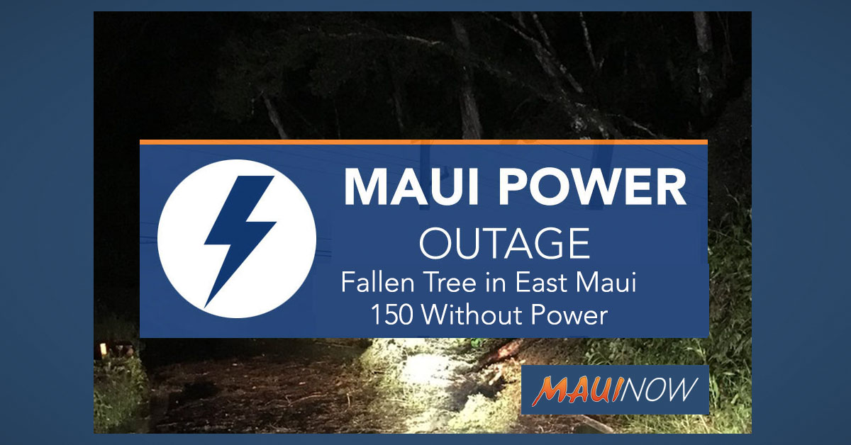 Fallen Tree Knocks Out Power to 150 Customers in East Maui