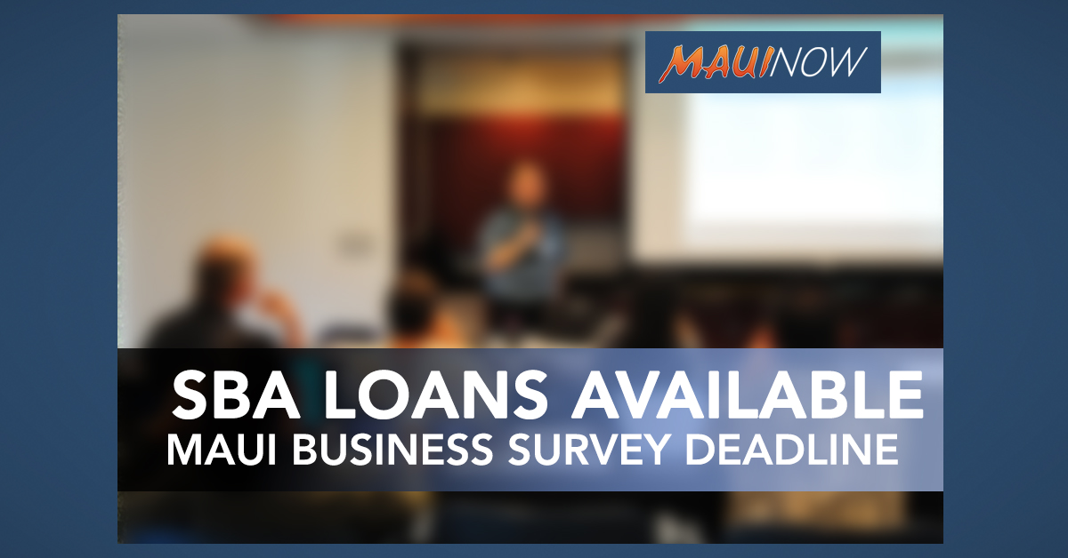 Maui Businesses Impacted by COVID-19 Urged to Fill Out Survey by  4 p.m. Wednesday