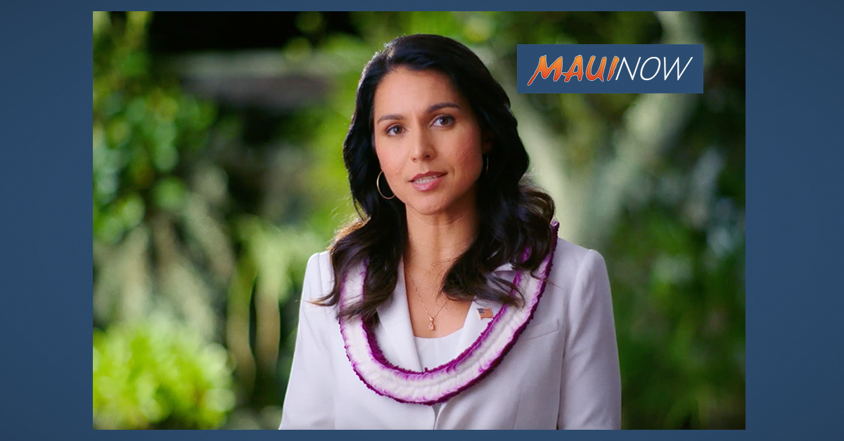 Gabbard: American People Need to be Protected From 'Corporate Corrupting Influence at the Pentagon'