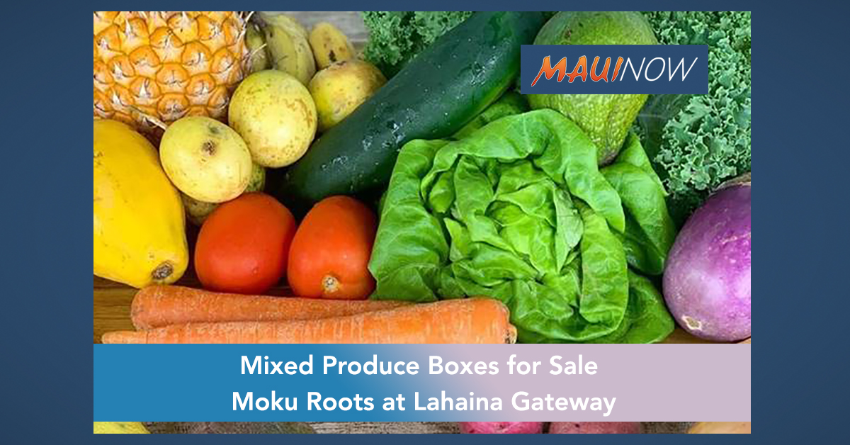 Take and Delivery Produce Boxes for Sale at Lahaina Business