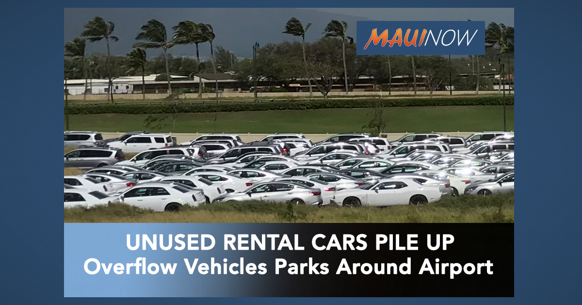 Unused Rental Vehicles Pile Up Around Kahului Airport Ahead of Quarantine Order