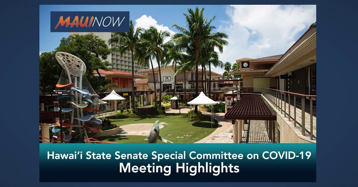 Highlights of Hawai'i State Senate Special Committee on COVID-19 Meeting