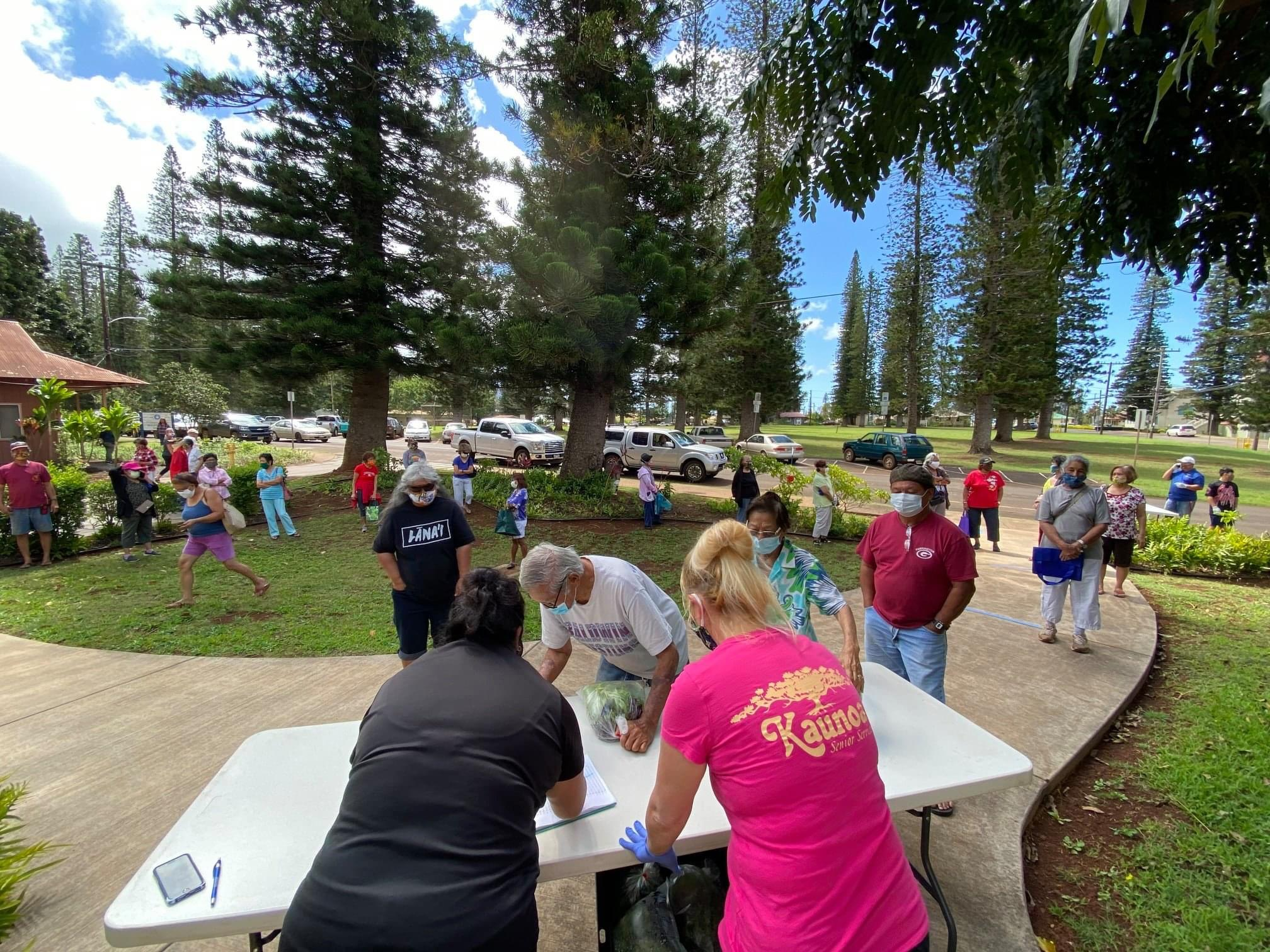 Happening Today: Fresh Produce Distribution on Lāna'i