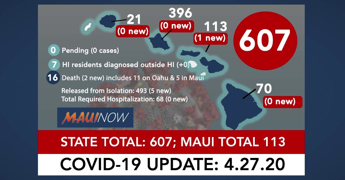 Hawai'i Coronavirus Total Now 607, 16th Death Reported: Maui Total Cases Rise by 1 to 113