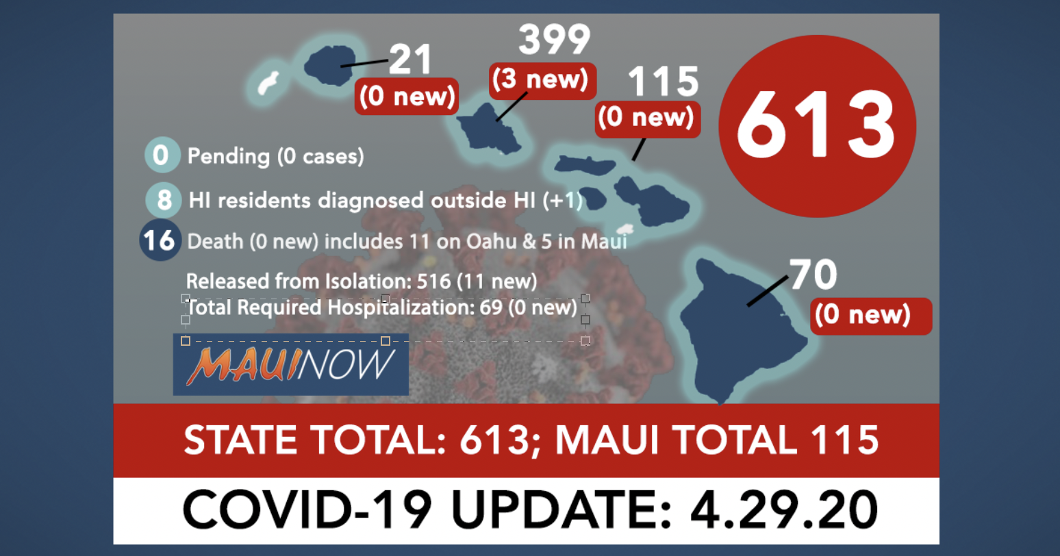 Hawai'i Coronavirus Total Now 613 (4 New Cases, 516 Recovered): Maui Total is 115 (0 New, 83 Recovered)