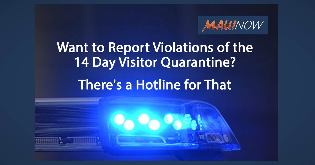 Want to Report Violations of the 14 Day Visitor Quarantine? There's a Hotline for That