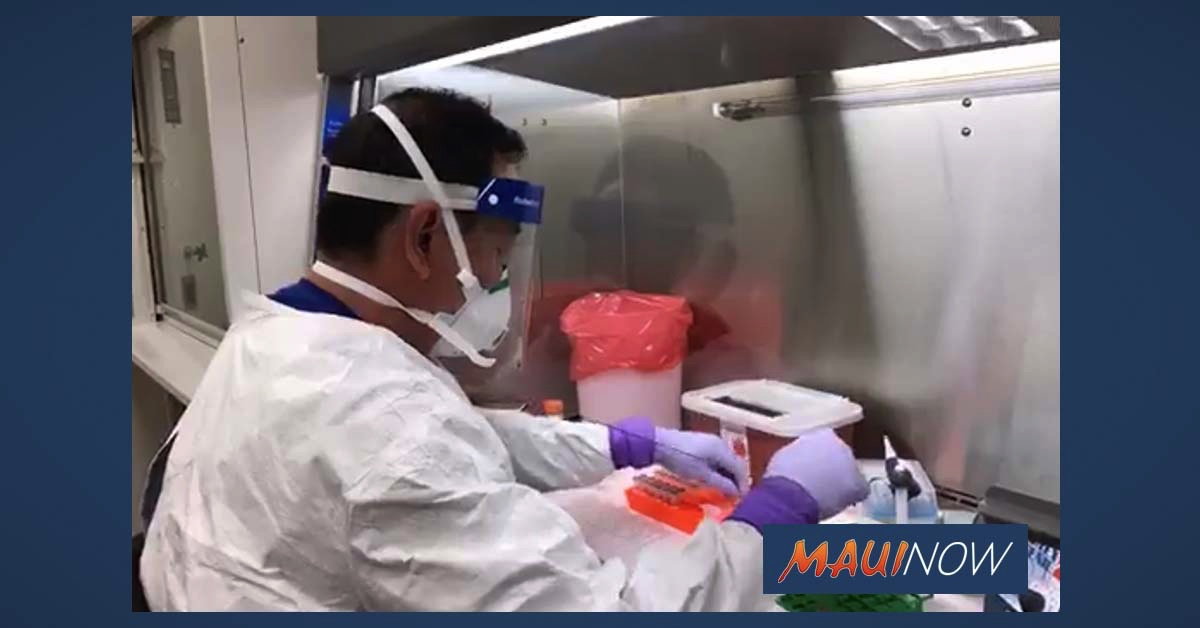 Accumulation of COVID-19 Cases on Maui Expected to Show in Upcoming Reports