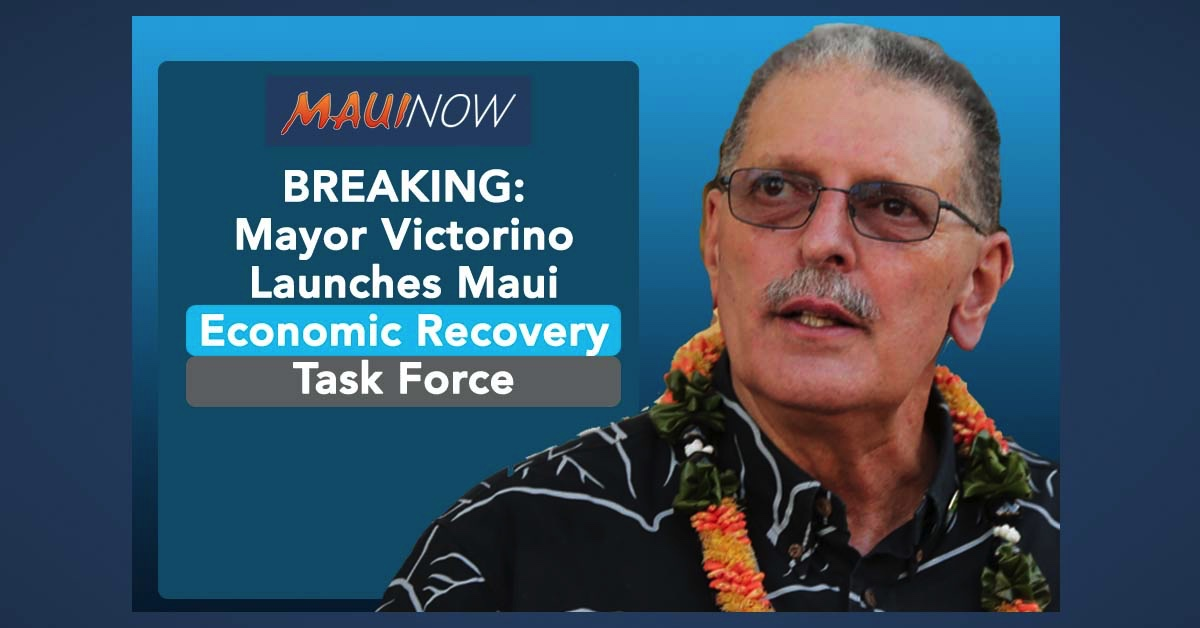 BREAKING: Mayor Launches Maui Economic Recovery Task Force