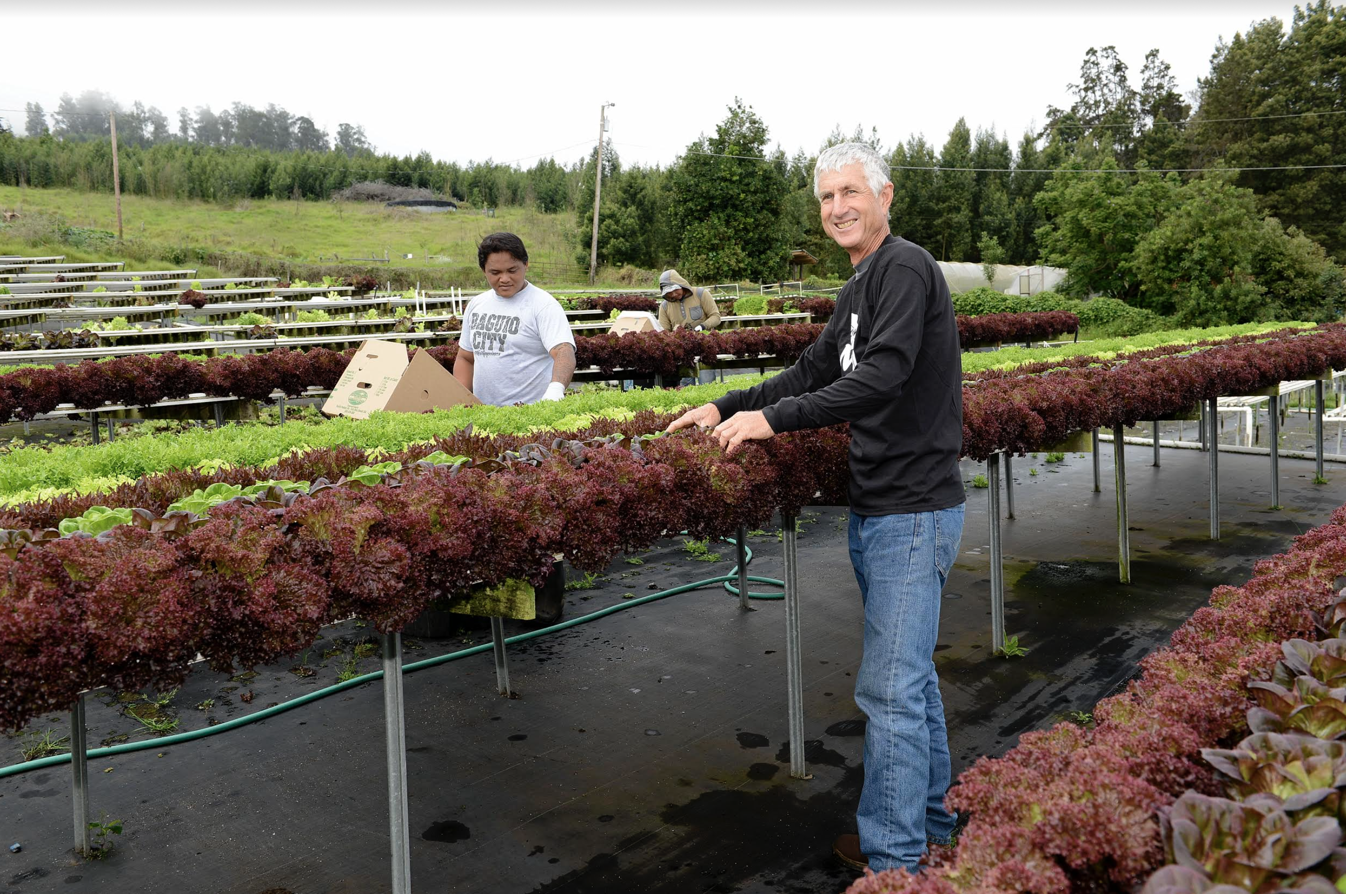 MCFB's Farm Product Purchase Program Extended