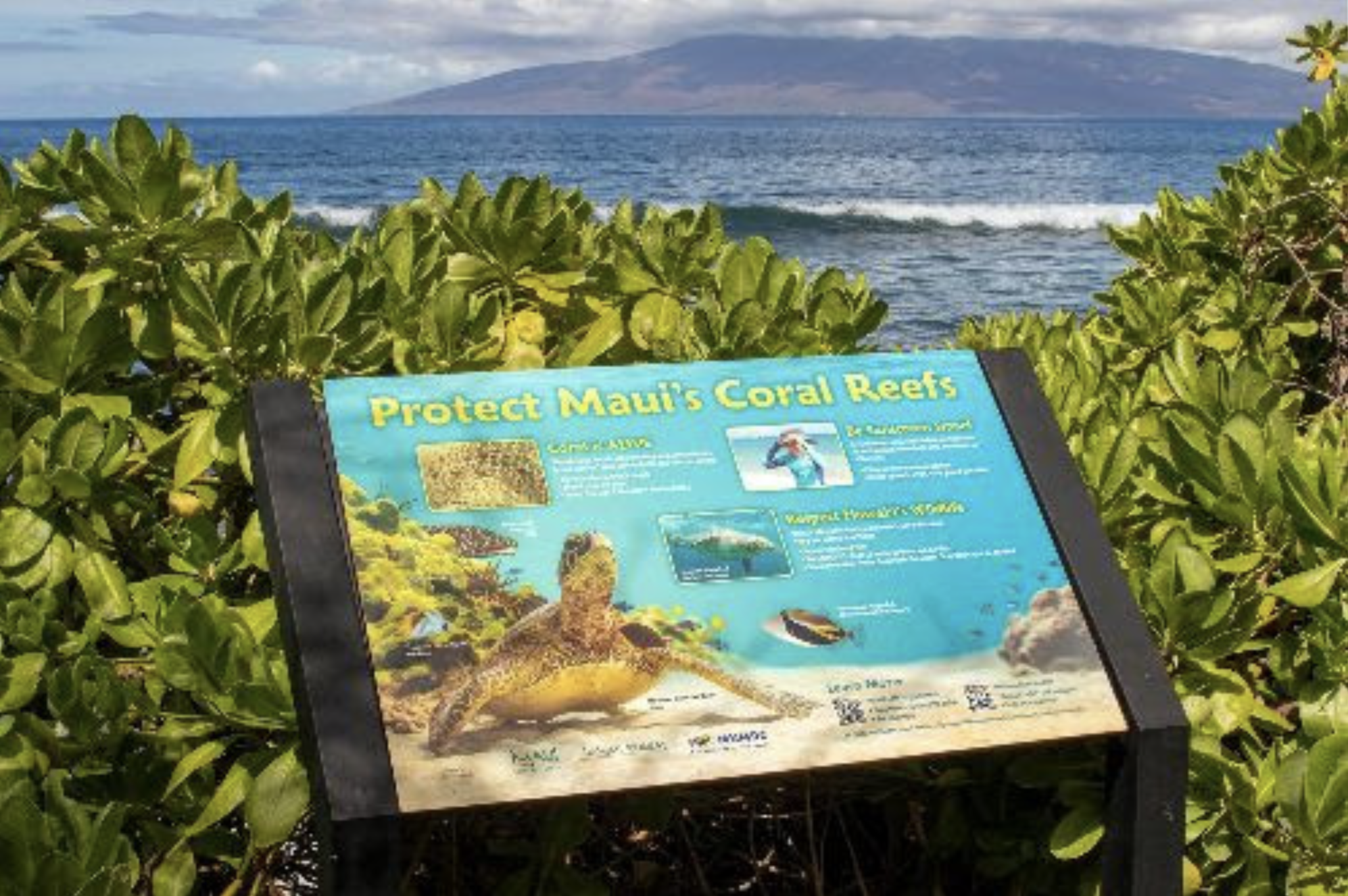 New Coral Reef Information Signs Installed at 39 Maui Beaches