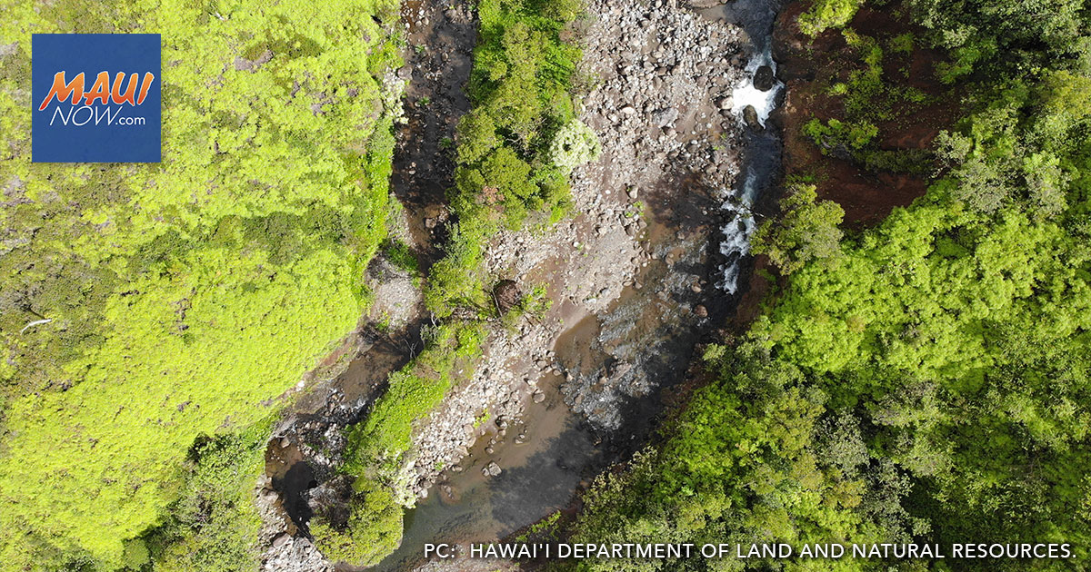 Kauaʻi Rapid Response Team Identifies New Rapid ʻŌhiʻa Death