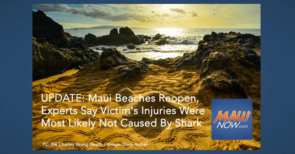 UPDATE: Maui Beaches Reopen, Experts Say Victim's Injuries Were Most Likely Not Caused By Shark