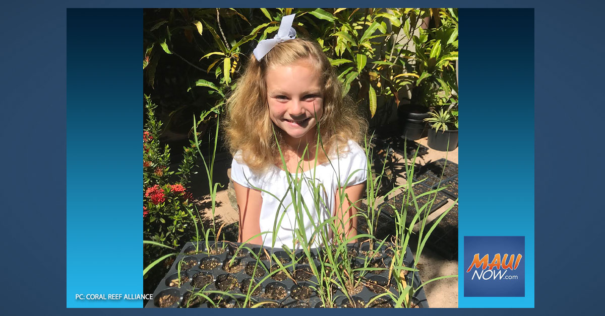 Maui 10-Year-Old Grows 900 Plants to Protect Coral Reefs