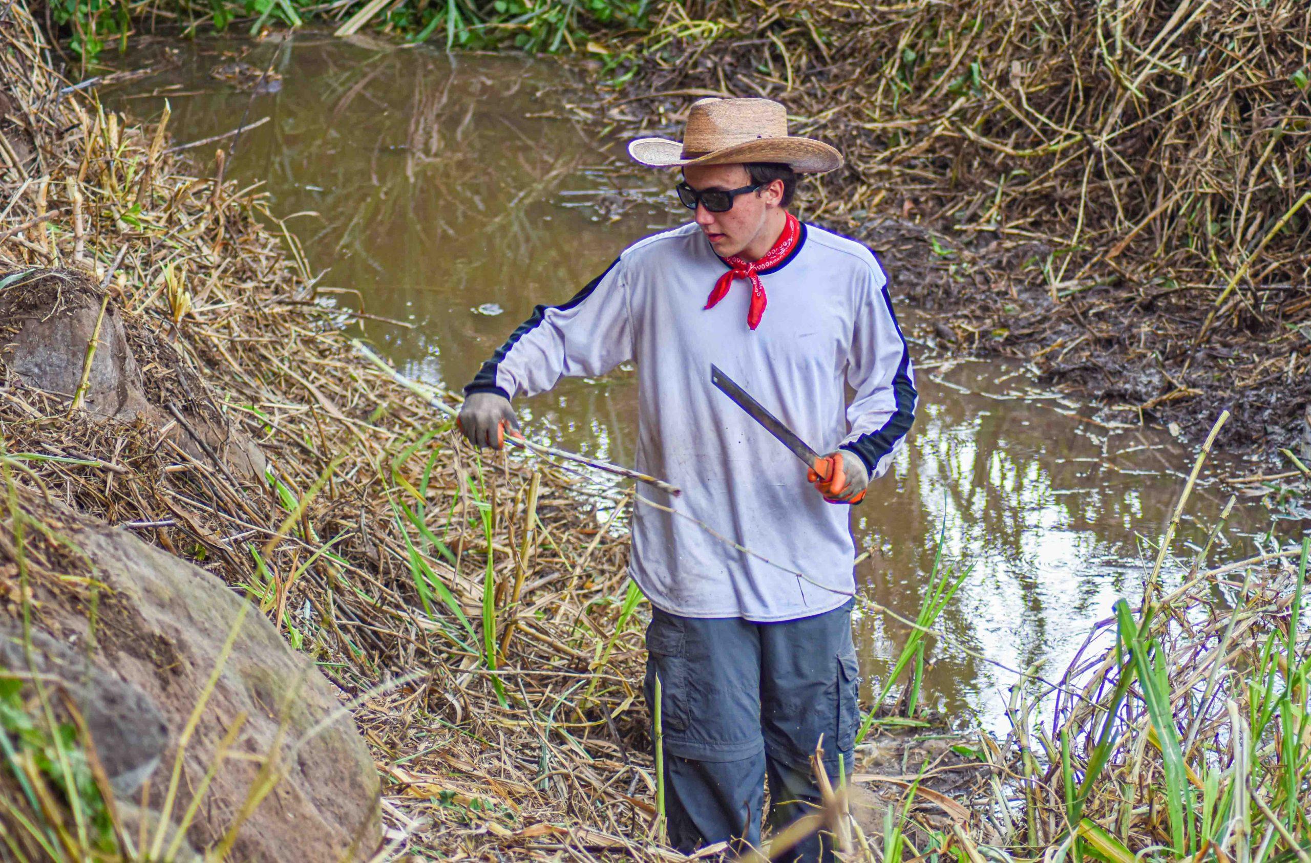 Pandemic Stimulus Puts Machete-Wielding Employees to Work at Waiheʻe Refuge