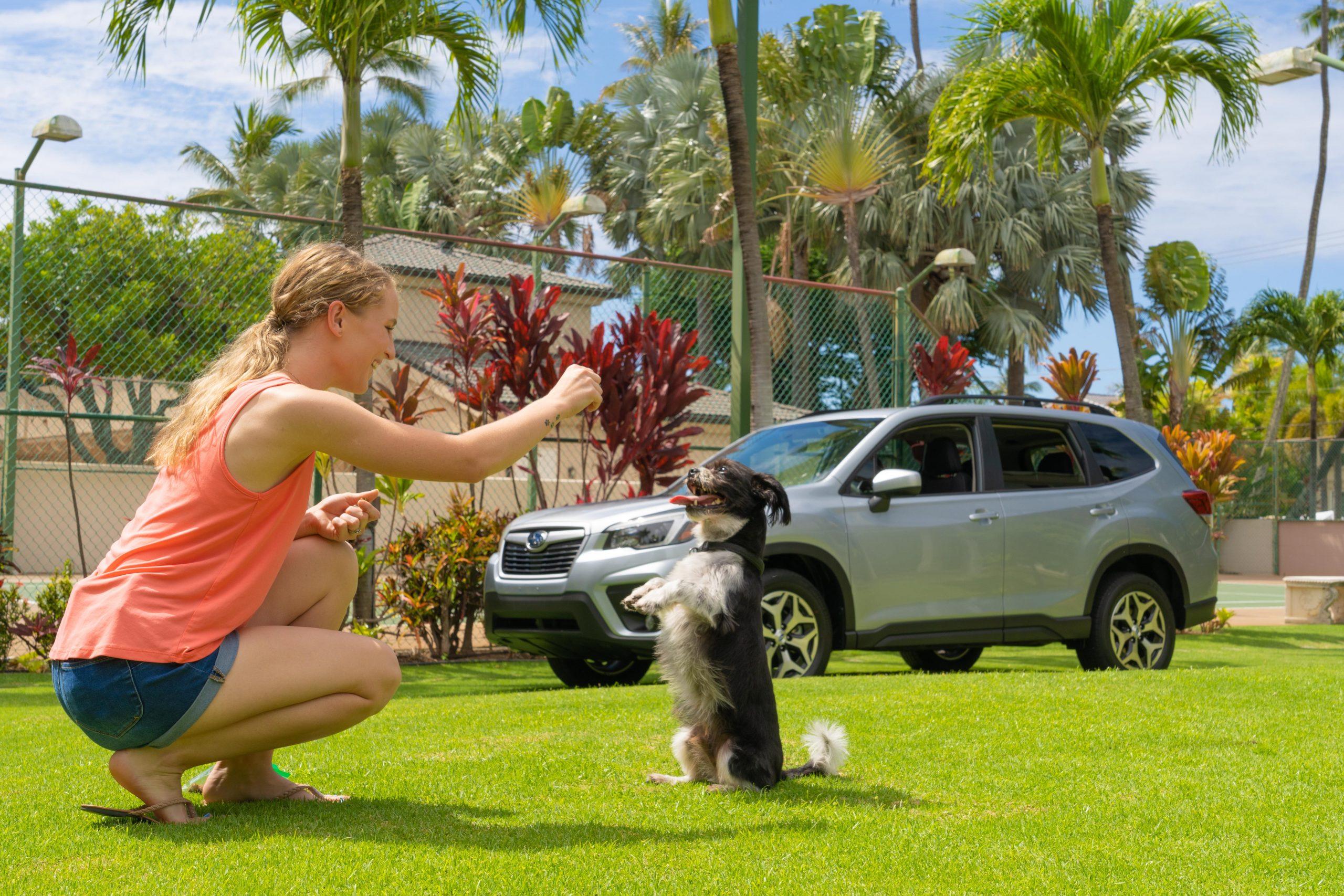 Subaru Hawaiʻi Kicks Off 10thAnnual Share the Love Sales Event