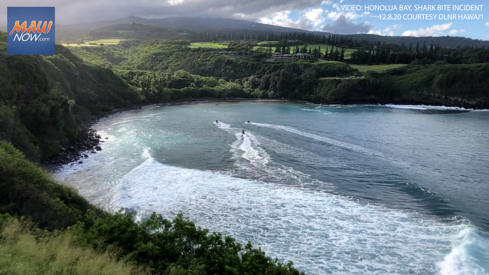 Shark Bite Victim on Maui Succumbs to Injuries