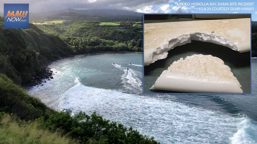VIDEO: Male Surfer Injured by Apparent Shark Bite at Honolua Bay