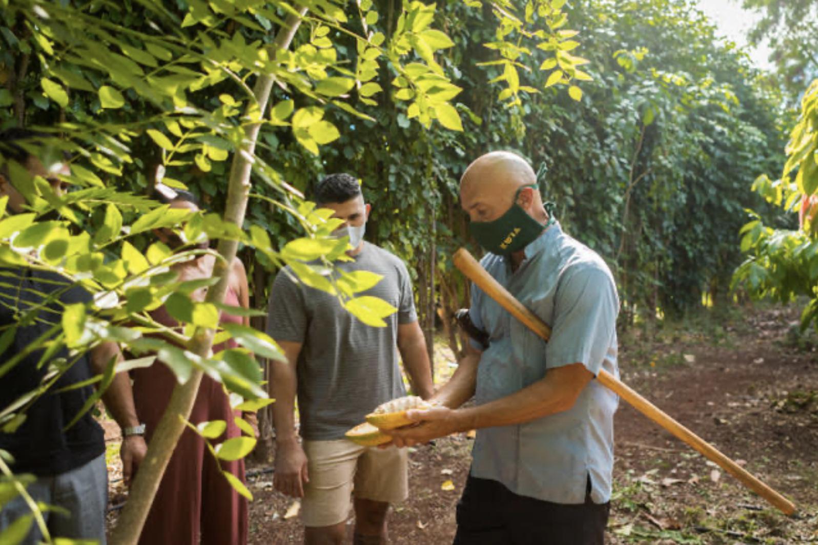 Maui Ku'ia Estate Chocolate Hosts'Farm to Bar' Maui Chocolate Tour