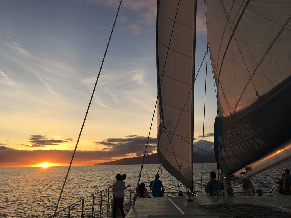 PacWhale Eco-Adventures Introduces New Concept in Maui Private Charter Tours