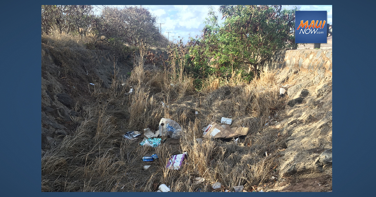 Volunteers Sought to Assist with Pre-Rainy Season Mā'alaea Ditch Clean Up, Dec. 27