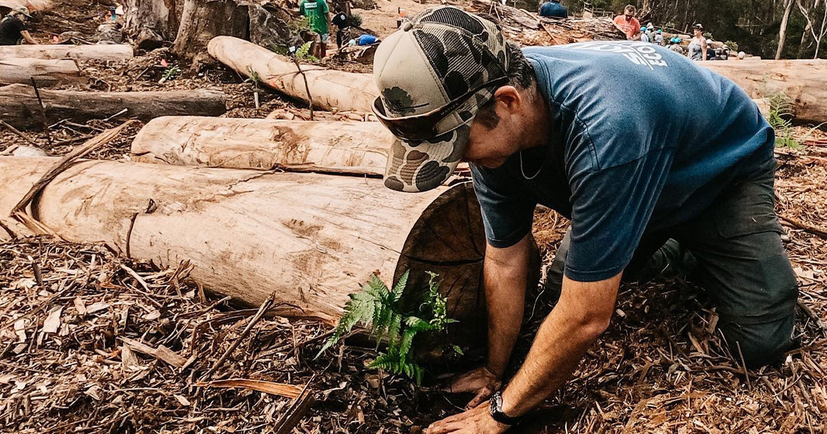 Pōhakuokalā Gulch Community Forest Restoration Project Plants 500 Native Trees, Removes Nearly 2,000 Invasive Trees