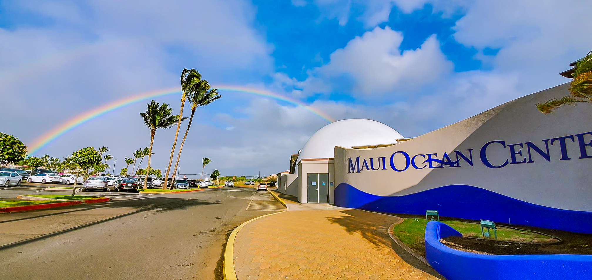 Maui Ocean Center to Provide Beach Cleanup Materials Starting June 8