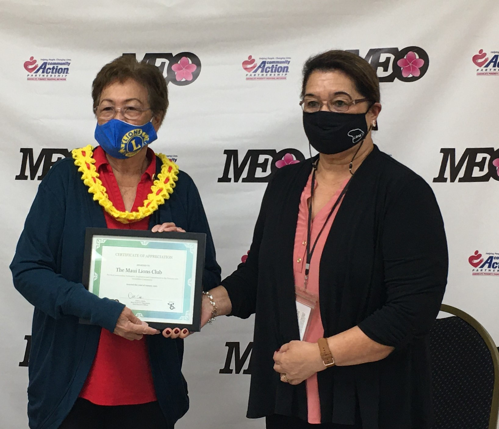 Maui's Virtual Abilities Awareness Fair Draws 700 Viewers and 20 Vendors/Support Groups