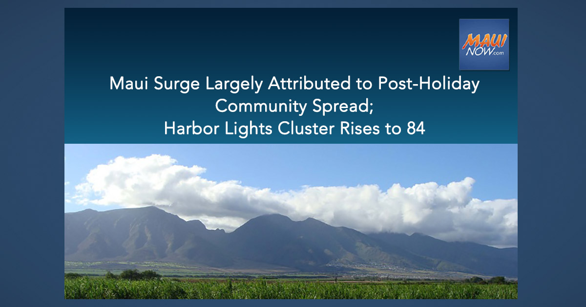 Maui Surge Largely Attributed to Post-Holiday Community Spread; Harbor Lights Cluster Rises to 84