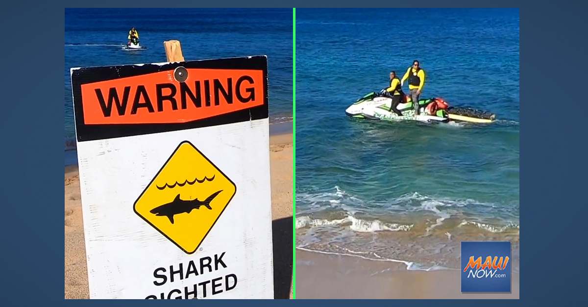 Close-Up Look at Shark Warning Protocols After Maui Incident