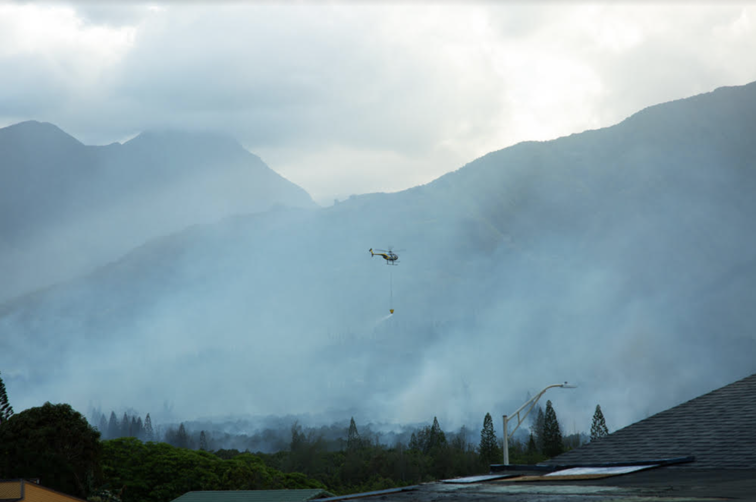 Updates: Waihe'e Brush Fire Burns 7 Acres, 100% Contained