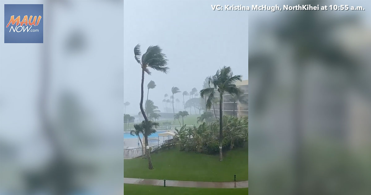 Video: Wednesday, Feb. 3, 2021 Maui Rainfall