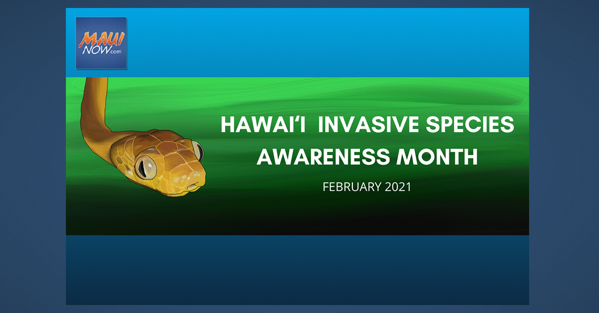 Today Marks Start of Hawai'i Invasive Species Awareness Month