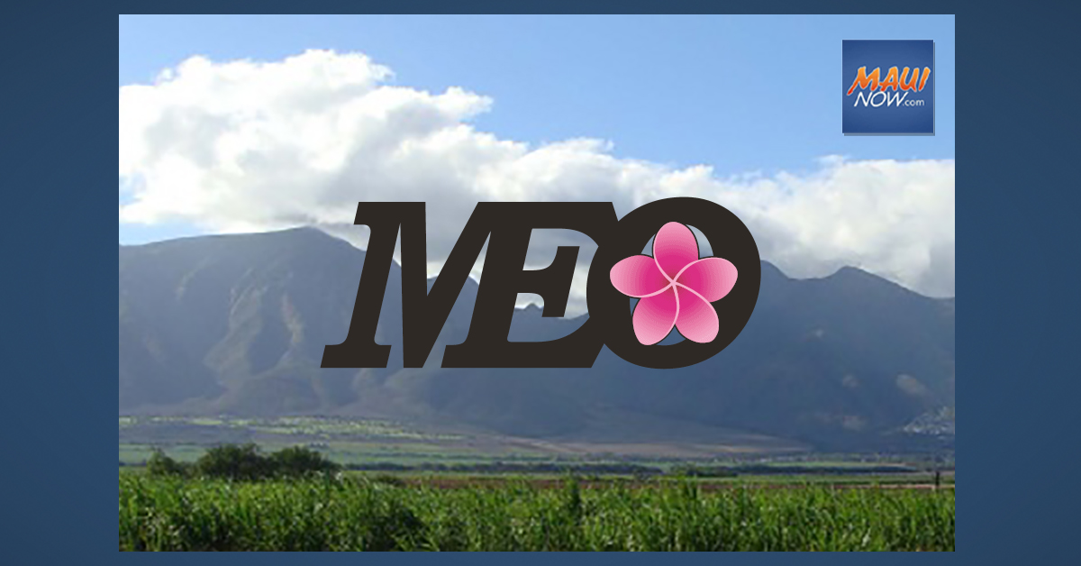 Family Fund Provides $10,000 Grant to Maui Economic Opportunity for Pandemic Assistance