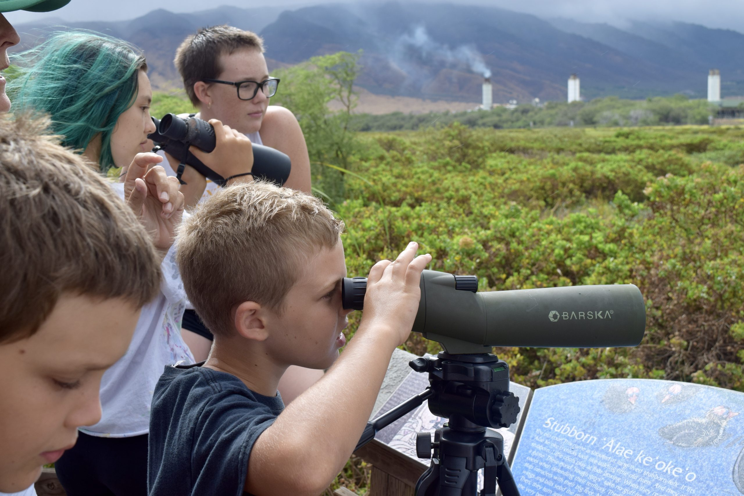 Learning Endeavors Offers Wetlands Camp for Maui Youth Grades 4-6 During Spring Break