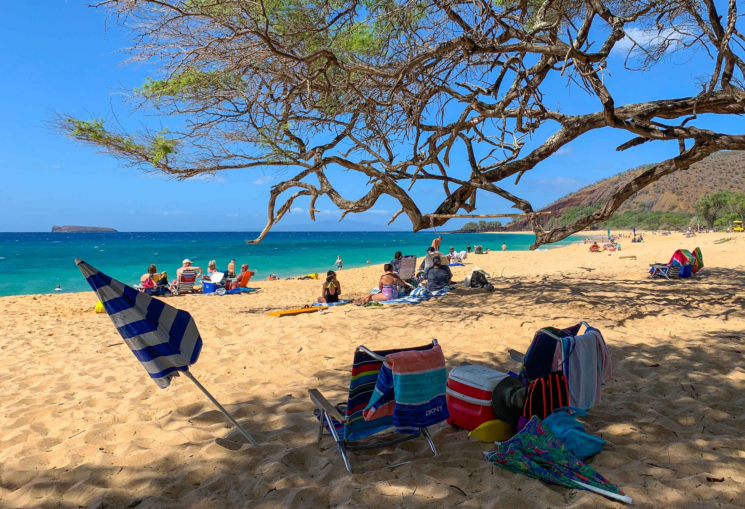 Maui's Vacation Rental Occupancy Climbed to 52.4% in February; Highest during Pandemic