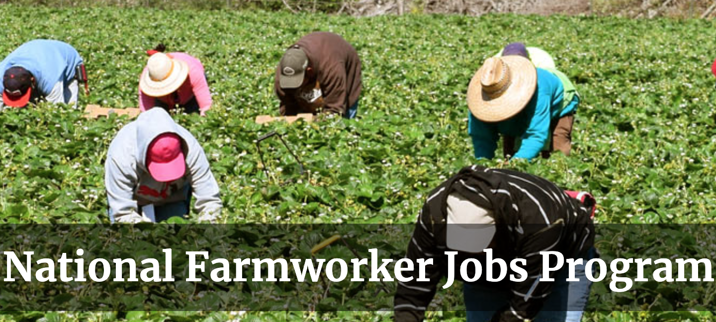 Maui's National Farmworker Jobs Program Now Accepting Applications