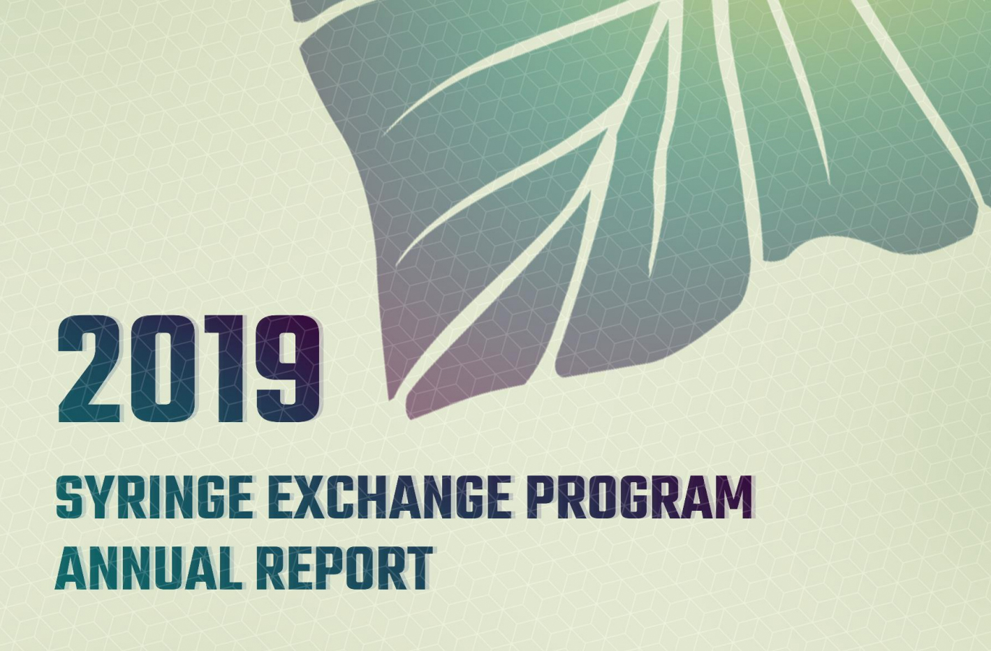 Report Highlights Continued Success of Hawaiʻi Syringe Exchange Program