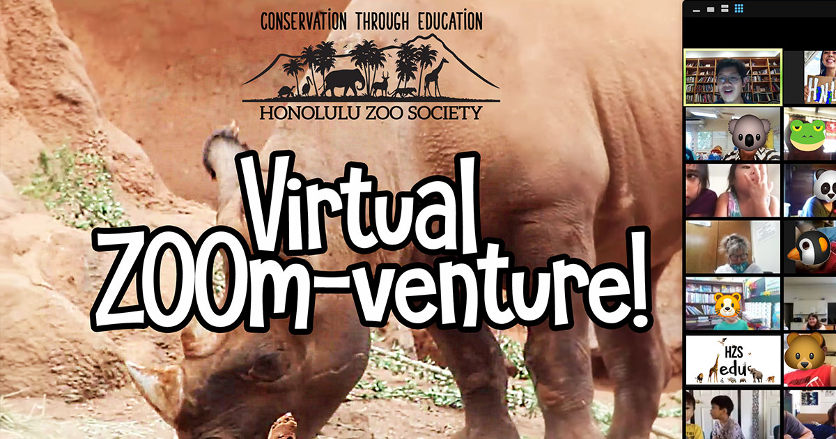 Imua Family Services Partners to Bring Virtual Zoo to Maui