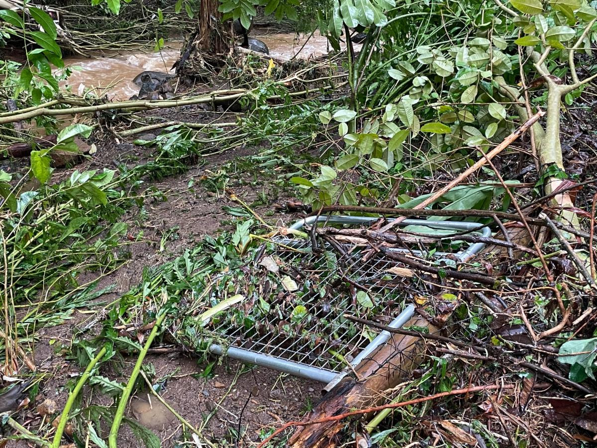 Leilani Farm Sanctuary Seeking Donations to Rebuild Fencing Destroyed by Dam Overflow