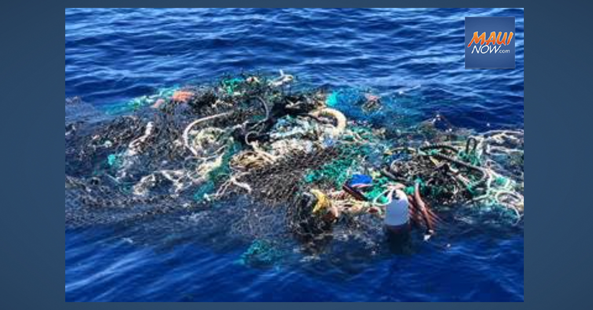 Pacific Whale Foundation Retrieves Ghost Nets in Maui Waters