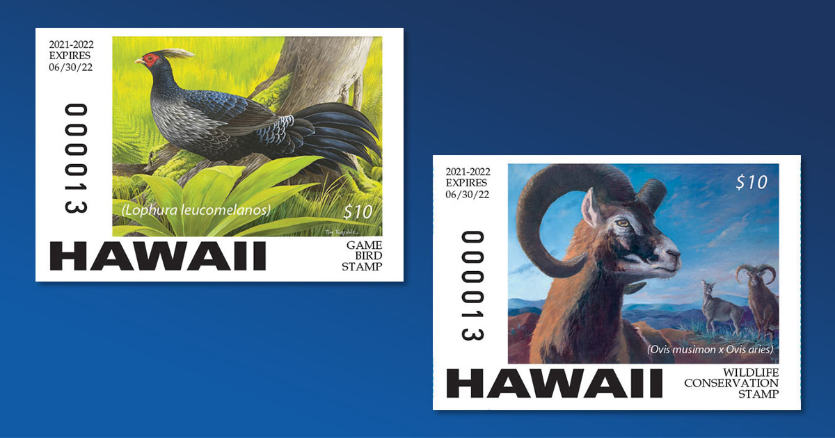 Hawai'i Hunting Stamp Contest Winners Announced, Stamps Available on July 1