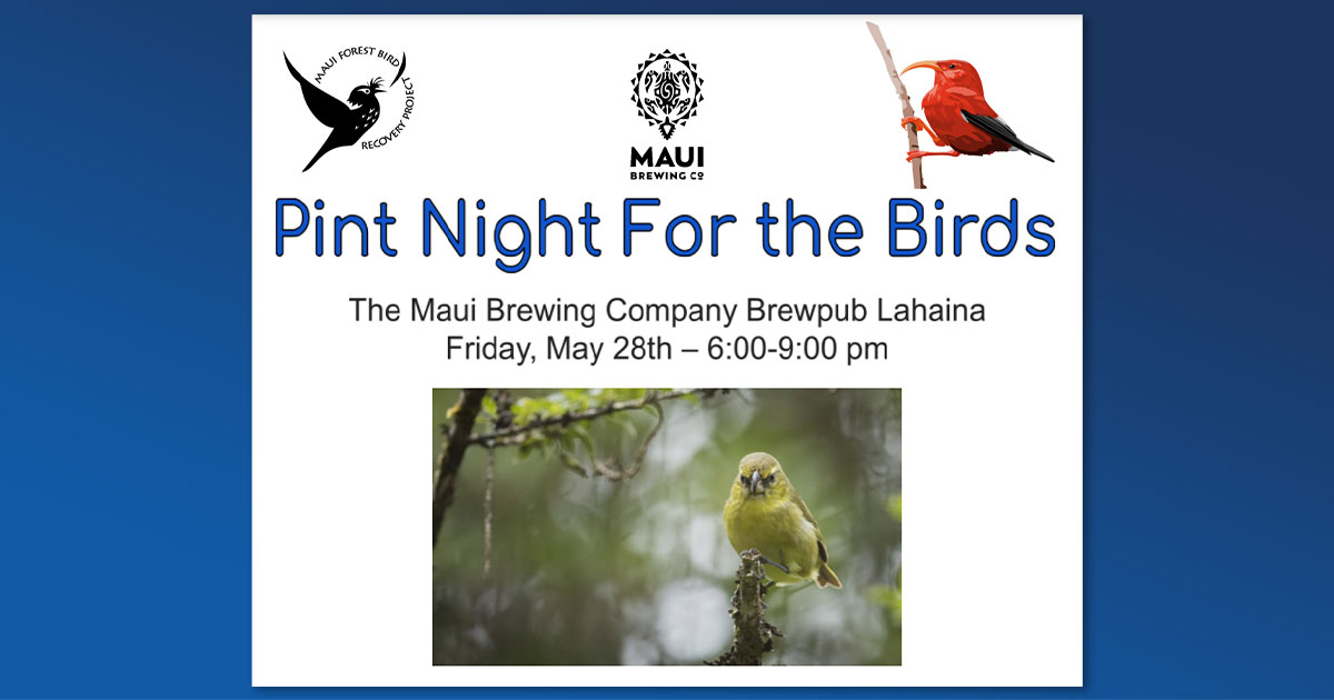 Maui Brewing Company Hosts Pint Night to Benefit Conservation and Research of Native Birds, May 28