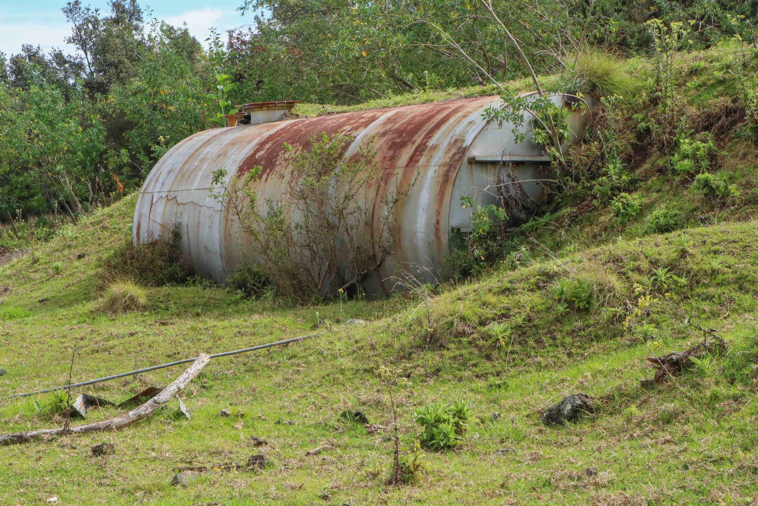 $200,000 Hazard Clean-Up Begins at Pu'u Wa'awa'a Forest Reserve on Big Island