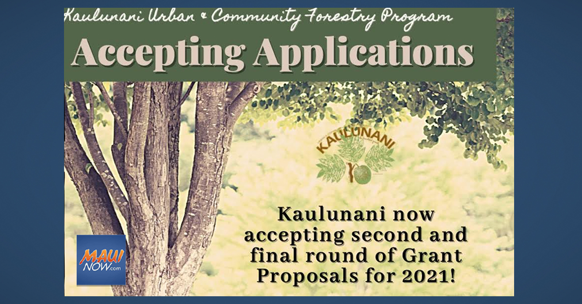 Final Round of 2021 Grants to Support Growing Community Forests
