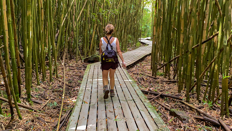 215,148 Tourists to Maui in May 2021 Spent More than 251,655 Visitors in May 2019