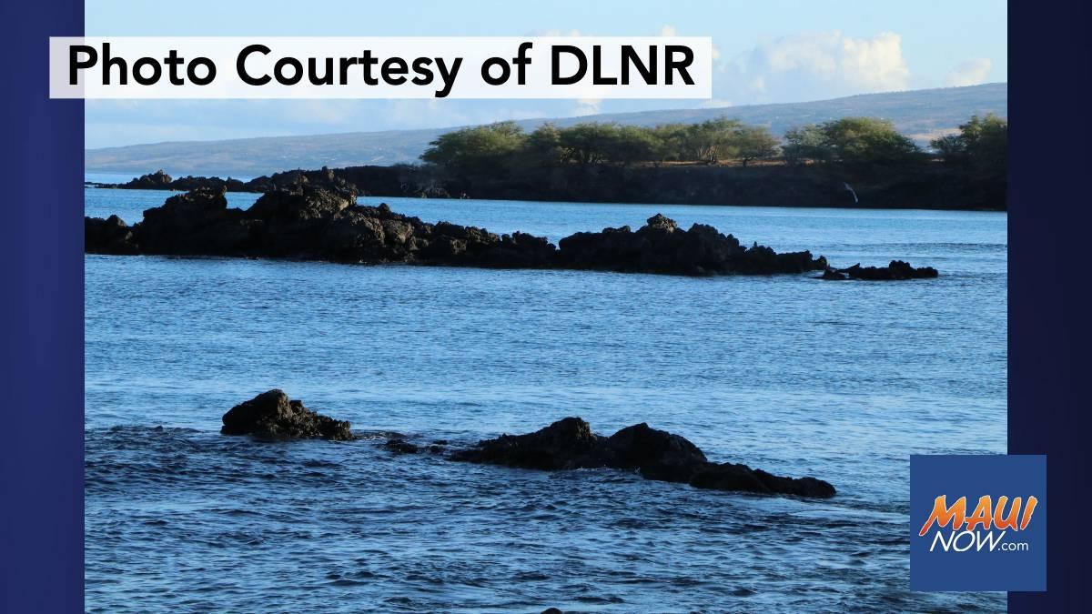 Hawaiʻi Shorelines Top List of Best Beaches in America