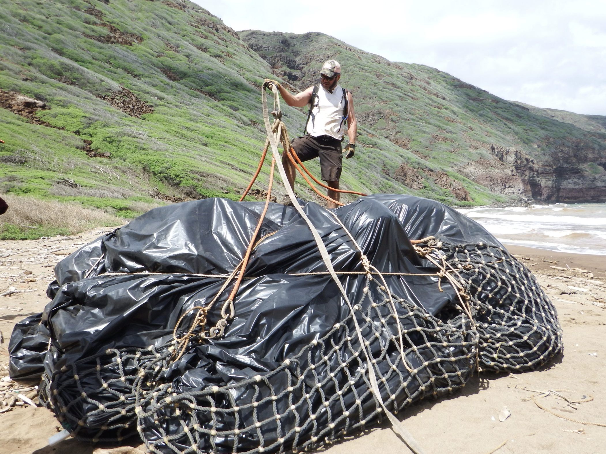 New Hotline Available to Report Marine Debris and Derelict Fishing Gear
